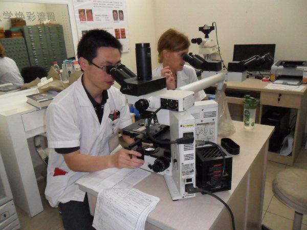 Médicos internos utilizando microscopios durante sus prácticas de medicina en China.